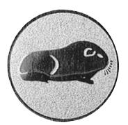 MA049 Cavia